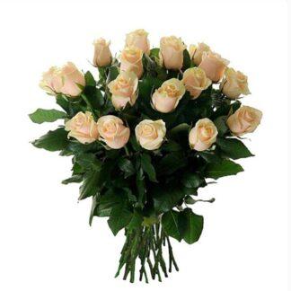 доставка роз по москве, цветы москва, доставка букетов по москве, цветы на 8 марта, 8 марта, розы кремового цвета, букет из роз кремового цвета, цветы, preferito
