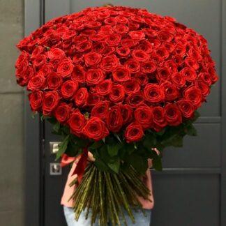 Большой букет из красных роз, Цветы Москва, Купить красные розы с доставкой по Москве