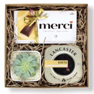 Подарочный набор с чаем, Подарочный набор с суккулентами, чайный набор, Подарки для женщин дёшево купить в Москве, Корпоративные подарки по низким ценам, Подарки Москва, Наборы, Подарочные наборы с доставкой по москве