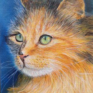 Картина с кошкой, купить картину для интерьера с кошками